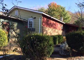 Casa en Remate en Hughesville 17737 TAYLOR HILL RD - Identificador: 4239174116