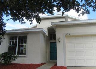 Casa en Remate en Hudson 34669 TURNSTONE CT - Identificador: 4241449398