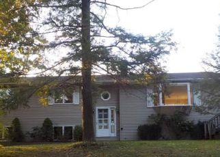 Casa en Remate en Saugerties 12477 RIDGE RD - Identificador: 4243779869
