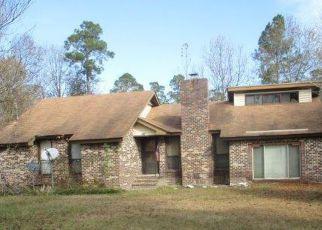 Casa en Remate en Harleyville 29448 BELLE CIR - Identificador: 4245111747
