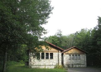 Casa en Remate en Livingston Manor 12758 FOX MOUNTAIN RD - Identificador: 4250713423