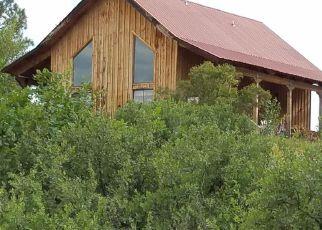 Casa en Remate en Pagosa Springs 81147 DEER TRL - Identificador: 4253111328