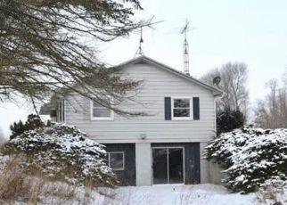 Casa en Remate en Webberville 48892 W COON LAKE RD - Identificador: 4253282583