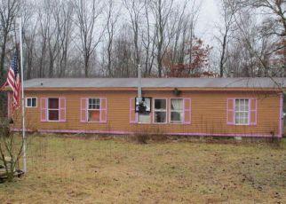 Casa en Remate en Bellevue 49021 S DR N - Identificador: 4254740150
