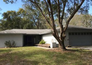 Casa en Remate en Land O Lakes 34639 PARKWAY BLVD - Identificador: 4254957394