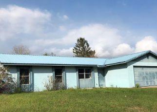 Casa en Remate en Deltona 32738 SKY ST - Identificador: 4254986299