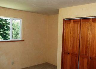Casa en Remate en Twisp 98856 TWISP RIVER RD - Identificador: 4257100847