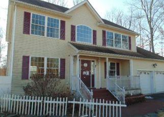Casa en Remate en Wallkill 12589 SAWYER WAY - Identificador: 4258283817