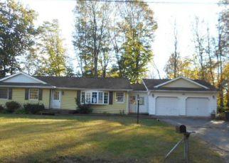 Casa en Remate en Kerhonkson 12446 CARLO DR - Identificador: 4258306134