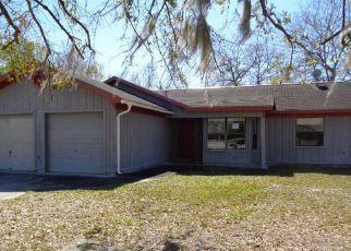 Casa en Remate en Saint Marys 31558 SUNNYSIDE LN - Identificador: 4259532918
