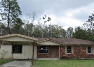 Casa en Remate en Jesup 31546 BERKLEY DR - Identificador: 4259918320