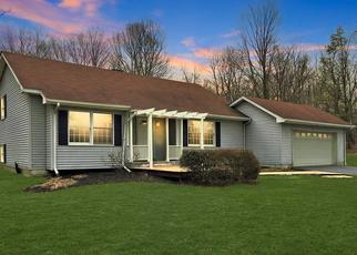 Casa en Remate en Clinton Corners 12514 PARK VIEW DR - Identificador: 4260080823