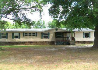 Casa en Remate en Nicholls 31554 S MEADOW DR - Identificador: 4262175647