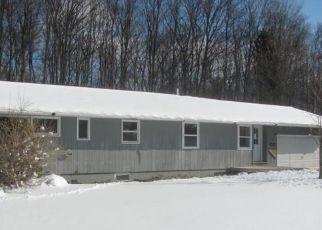 Casa en Remate en Cedar 49621 S SKIVIEW CIR - Identificador: 4262558428