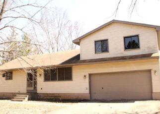 Casa en Remate en Lakeland 55043 QUANT AVE N - Identificador: 4262660477