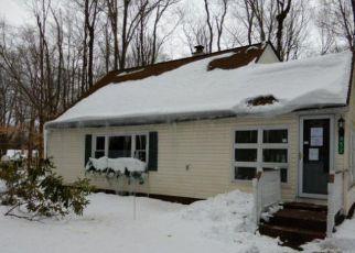 Casa en Remate en Pocono Summit 18346 STILLWATER DR - Identificador: 4263222397