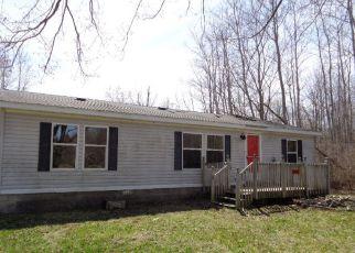 Casa en Remate en Vassar 48768 COUNTRY VIEW DR - Identificador: 4266021947
