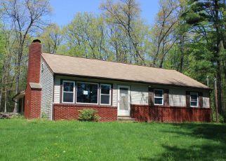 Casa en Remate en New Columbia 17856 NITTANY MOUNTAIN RD - Identificador: 4270587818