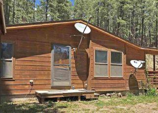 Casa en Remate en Bayfield 81122 FOREST LAKES DR - Identificador: 4271131782