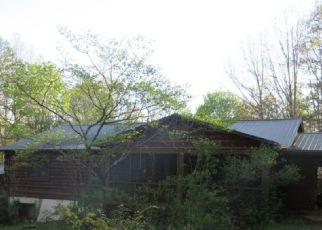 Casa en Remate en Mineral Bluff 30559 LOFTY HTS - Identificador: 4271301712
