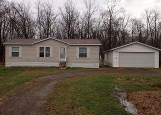 Casa en Remate en Hinckley 55037 LOG CABIN RD - Identificador: 4271407699