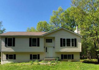 Casa en Remate en Albrightsville 18210 CAEDMAN DR - Identificador: 4271871960