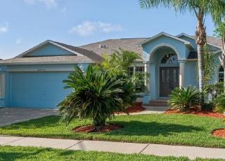 Casa en Remate en Lutz 33559 PEACE PIPE CT - Identificador: 4272008597