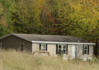 Casa en Remate en Pierz 56364 253RD ST - Identificador: 4272465852