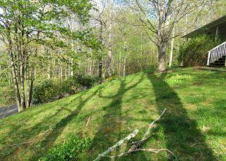 Casa en Remate en Fleetwood 28626 GRANDPAS FARM RD - Identificador: 4278253671