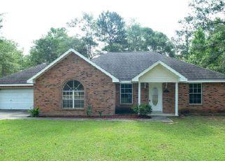 Casa en Remate en Carriere 39426 STONE HOLLOW TRCE - Identificador: 4278407397