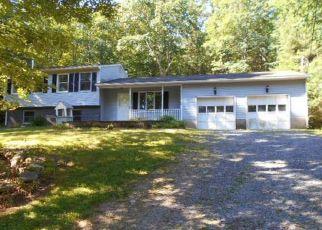 Casa en Remate en Sparrow Bush 12780 PEENPACK TRL - Identificador: 4280145270