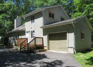 Casa en Remate en Bushkill 18324 SCARBOROUGH WAY - Identificador: 4283908344