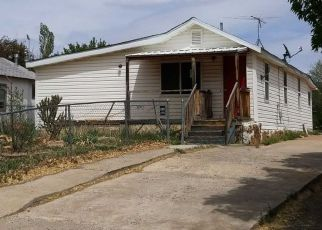 Casa en Remate en Cortez 81321 S BEECH ST - Identificador: 4285983921