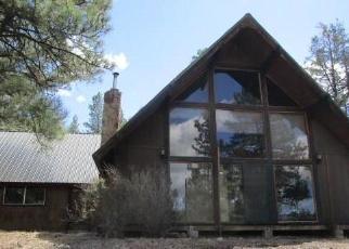 Casa en Remate en Pagosa Springs 81147 DYKE BLVD - Identificador: 4285984344