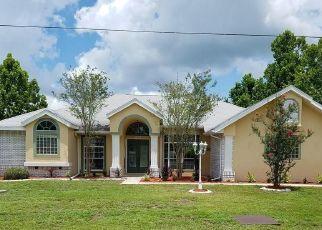 Casa en Remate en Crystal River 34429 W PAUL BRYANT DR - Identificador: 4286975933