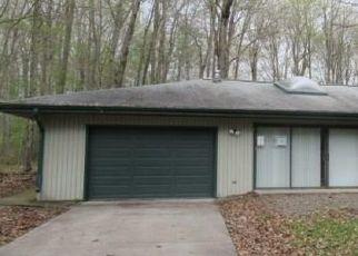 Casa en Remate en Rockwood 15557 W LAUREL LN - Identificador: 4287477398