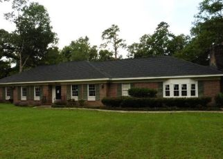 Casa en Remate en Johnsonville 29555 WHITE OAK DR - Identificador: 4290227439