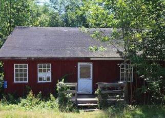 Casa en Remate en Narrowsburg 12764 STATE ROUTE 52 - Identificador: 4290328161