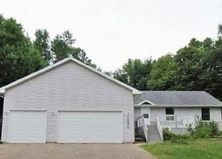 Casa en Remate en Lindstrom 55045 288TH ST - Identificador: 4295819936