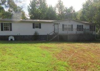Casa en Remate en Oakwood 24631 DISMAL RIVER RD - Identificador: 4297456641