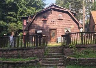 Casa en Remate en Wanaque 07465 SNAKE DEN RD - Identificador: 4298434634