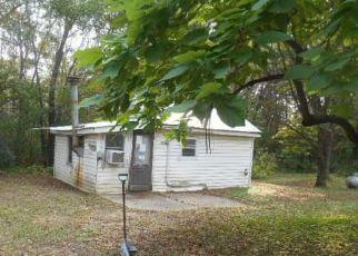 Casa en Remate en Big Lake 55309 188TH ST NW - Identificador: 4301253430