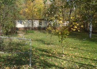 Casa en Remate en Saranac 48881 BLUEWATER HWY - Identificador: 4301336653