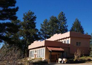 Casa en Remate en Pagosa Springs 81147 SUMMIT TRL - Identificador: 4302588826
