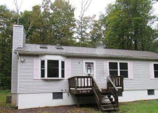 Casa en Remate en Pocono Lake 18347 MAXATAWNY DR - Identificador: 4303441100