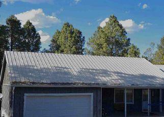 Casa en Remate en Ruidoso 88345 SPRING RD - Identificador: 4304974458