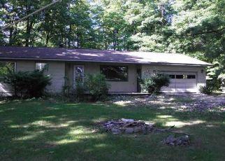 Casa en Remate en Lake Leelanau 49653 E KIRT RD - Identificador: 4305029197