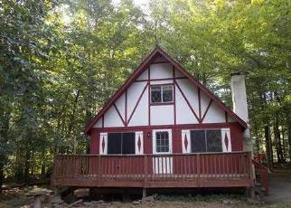 Casa en Remate en Pocono Lake 18347 OUTER DR - Identificador: 4305628802