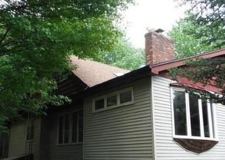 Casa en Remate en Carsonville 48419 FORESTER RD - Identificador: 4305679599
