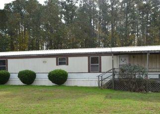 Casa en Remate en Mathews 23109 MARSH HAWK RD - Identificador: 4307262436
